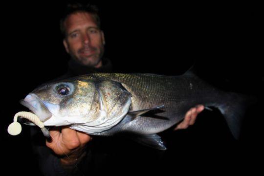 Pêche de nuit