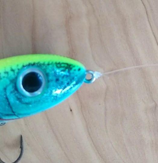 Noeud de pêche Palomar
