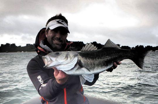 Pêche en traction