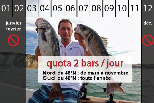 Quota à 2 bars par jour