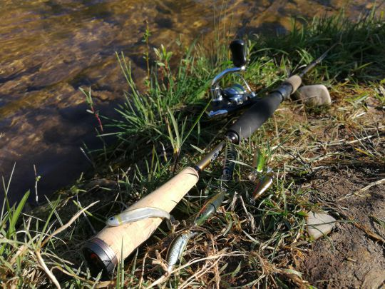 Pêche aux leurres en début de saison