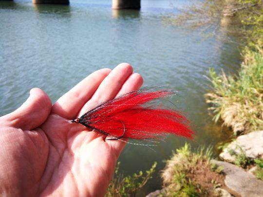 streamer-mouche-carnassier