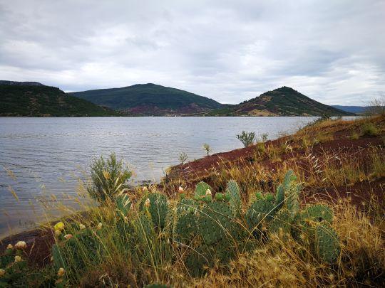 Les berges du Salagou