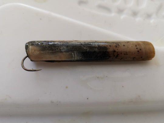 Un couteau esché en entier