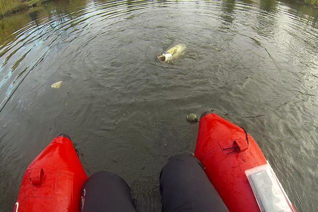 Pêche en float tube avec le Deeper CHIRP+