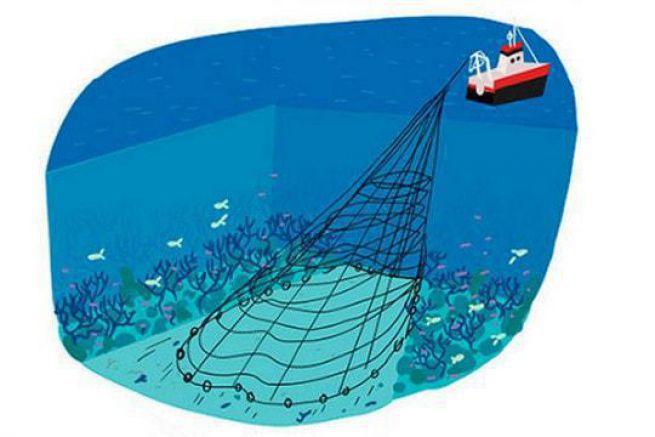 Illustration de la BD Prends 5 minutes et signe copain sur le chalutage en eau profonde