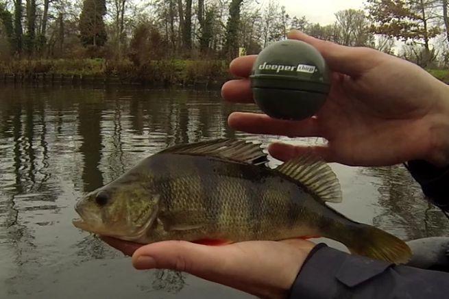 Pêche aux leurres avec le nouveau Deeper CHIRP+
