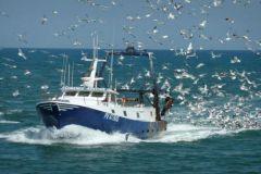 Port de pêche de Fontarrabie, Guipuscoa, Pays basque, Espagne