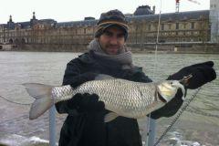 Nautic Street Fishing