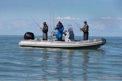 Le concours de pêche No Kill du Grand Pavois Fishing