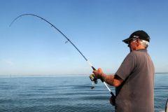 La Salt Spiner 802 H est parfaitement adaptée pour la pêche au shad.