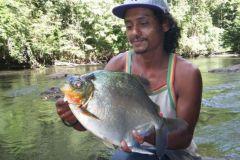 Pêche de l'aimara en guyane