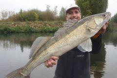 La pêche du sandre en fleuve