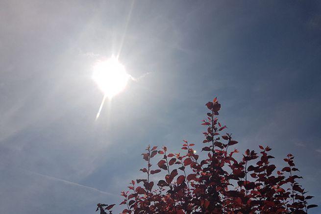 Le soleil au zénith