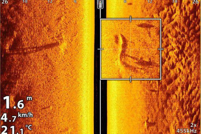 Un silure bien visible dans 1,60 m d'eau